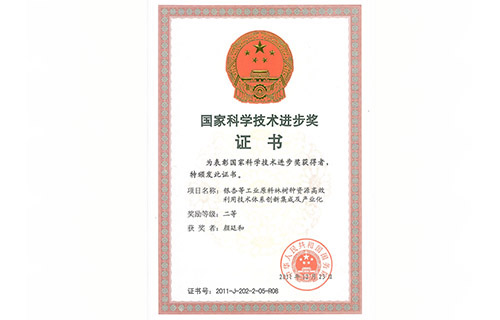 国家科学技术进步奖二等奖