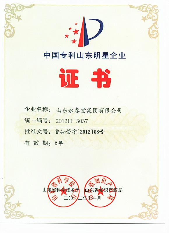 专利山东明星企业证书